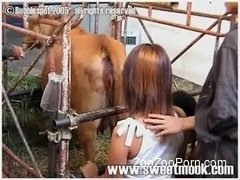 Asian farm girl gives a rimjob for a farm animal